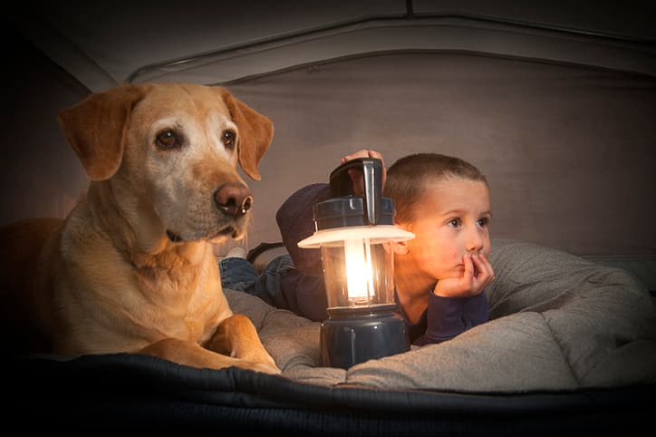a child and a labrador retriever inside a camping tent
